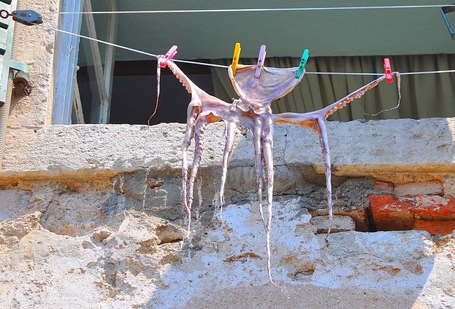 Mustekalan kuivatusta Kotorin vanhassa kaupungissa