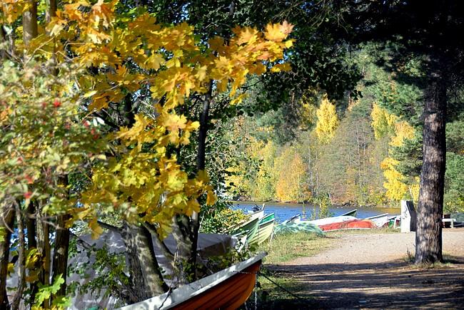 Seuraa vedenrantaa koko matka Pyynikin uimarannalle saakka