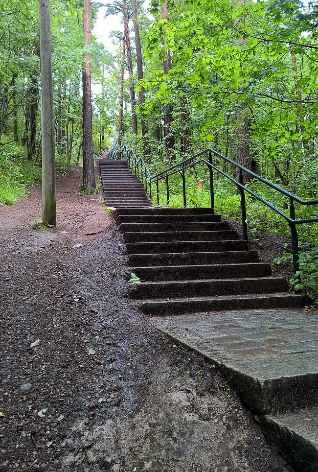 Tahdon portaat - sellaiset 15 kertaa voi kokeilla alkuun parin minuutin palautuksella