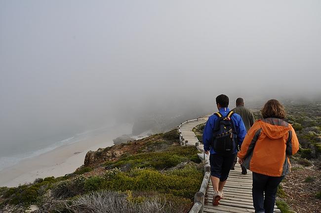 Alkumatka Cape Pointilta kohti Hyväntoivonniemeä on leppoisaa tehtyä puupolkua pitkin.