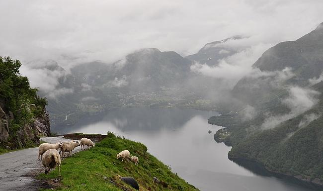 Kesällä Norjassa ei välttämättä tarvitse ottaa yhään askelta nähdäkseen kauniita maisemia auton ratin takaa.