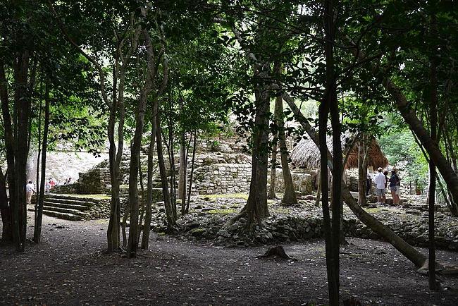Pääportin jälkeen alkaa heti tiheä viidakko, jossa on puiden suojissa mukava kävellä kohti raunioita.