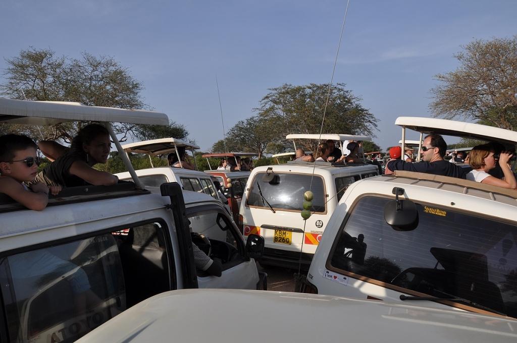 Jossain lähettyvillä on leijona... Safarien varjopuolena on Tsavo Eastissä se, että autojen määrää ei ole rajoitettu eläinten lähellä.