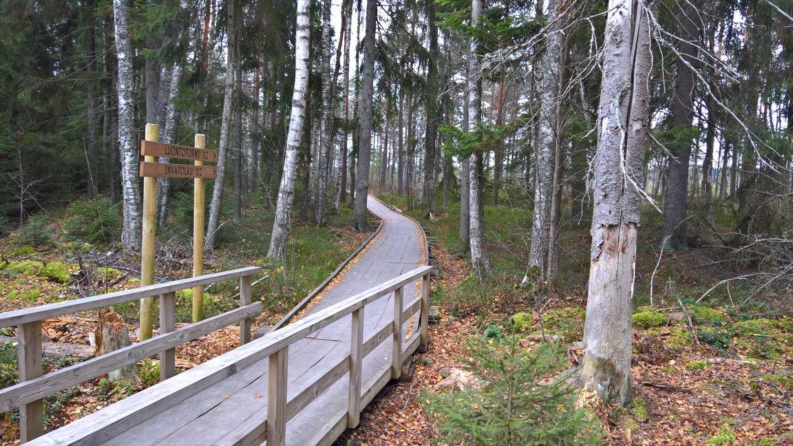 Reitin ensimmäiset parisataa metriä soveltuu myös esteettömään matkailuun.