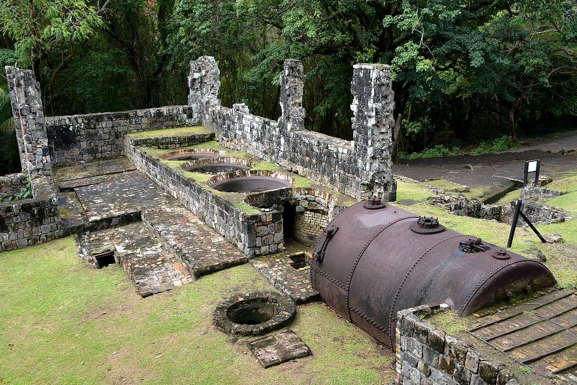 Sokeriviljely on ollut Karibian alueiden merkittävimpiä tulonlähteitä.