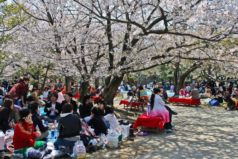 10 syytä matkustaa Fukuokaan