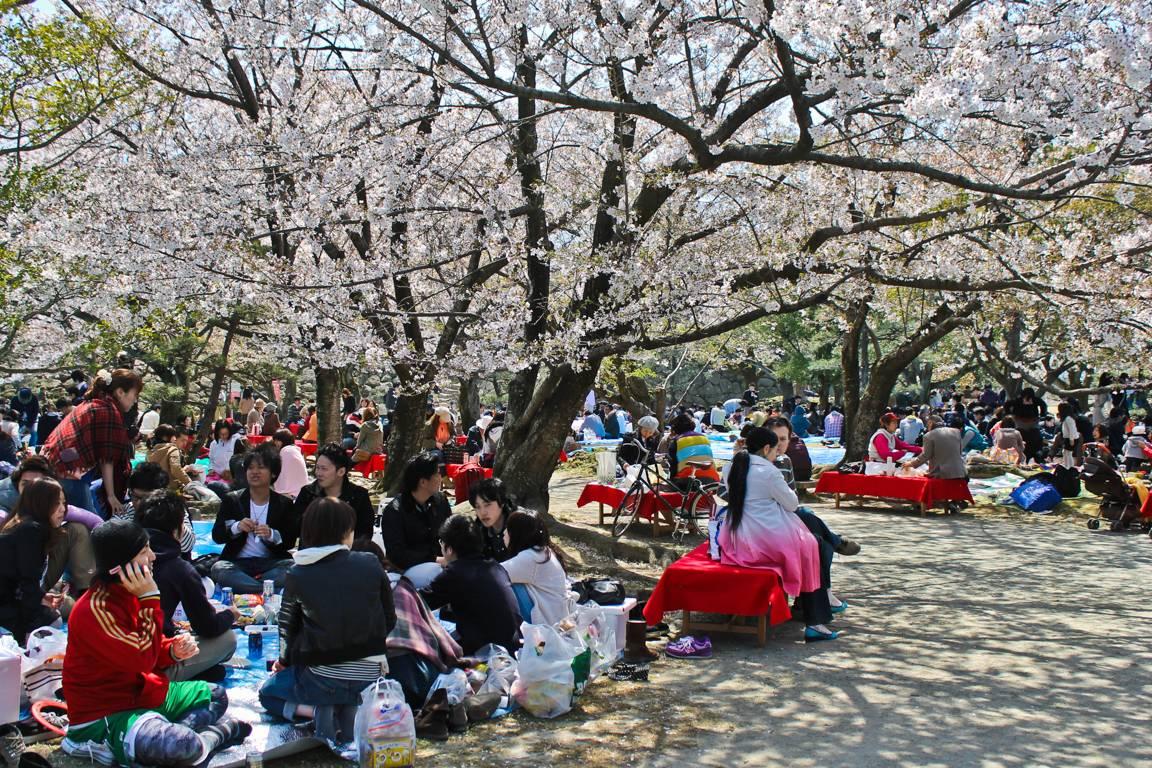 Fukuokan linnan rauniot copyright Lotta Watia.
