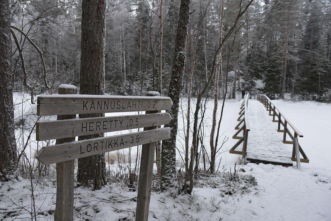 Reitin loppupäässä ollut silta tarjoaa kesällä upeat maisemat Isojärven kansallispuistoon.