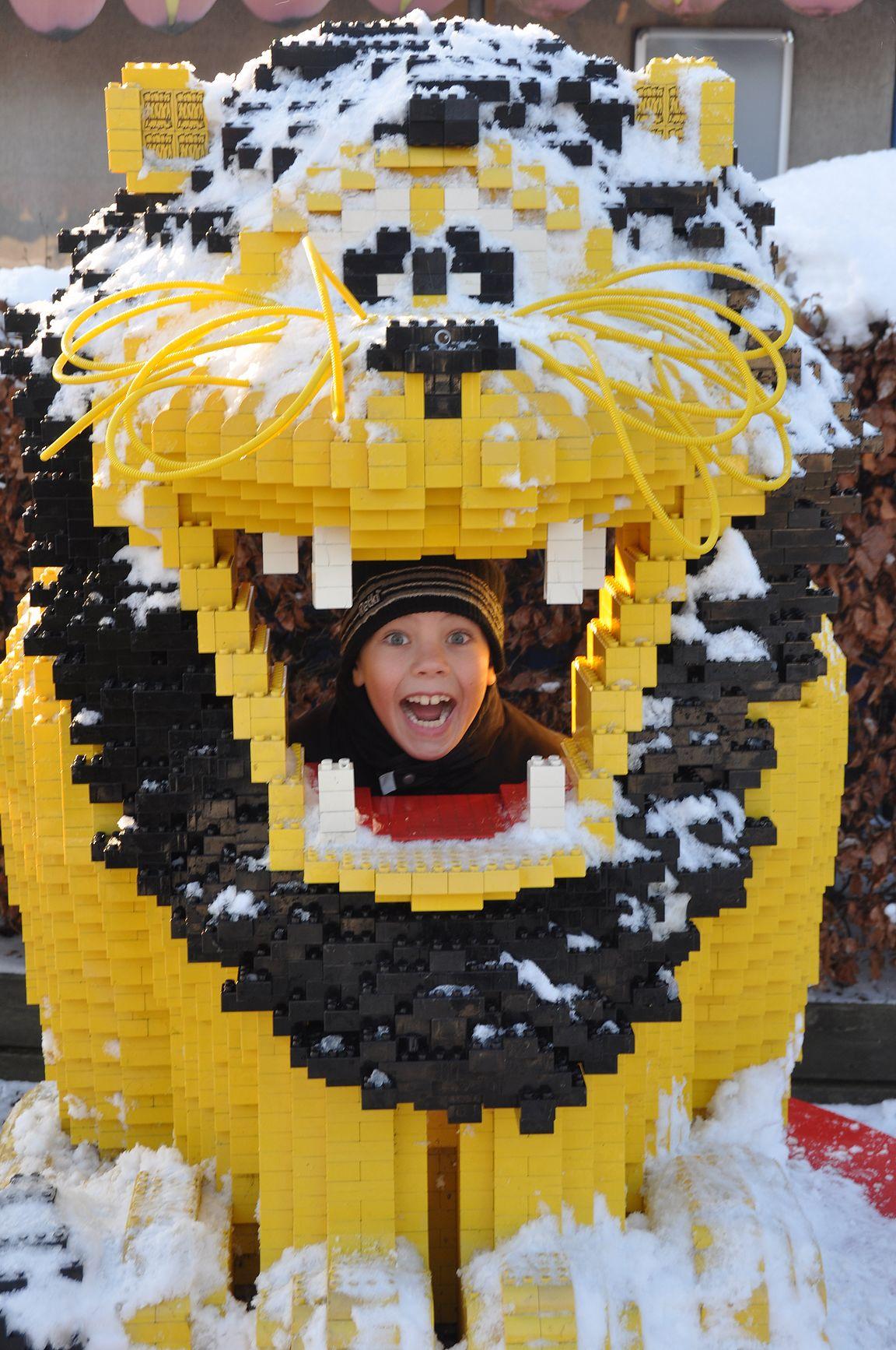 Leijona oli hauska talvellakin.
