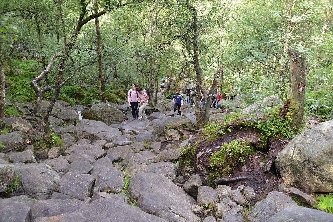 ... mutta keskimäärin keskityttiin kiviaskelmilla kiipeämiseen.