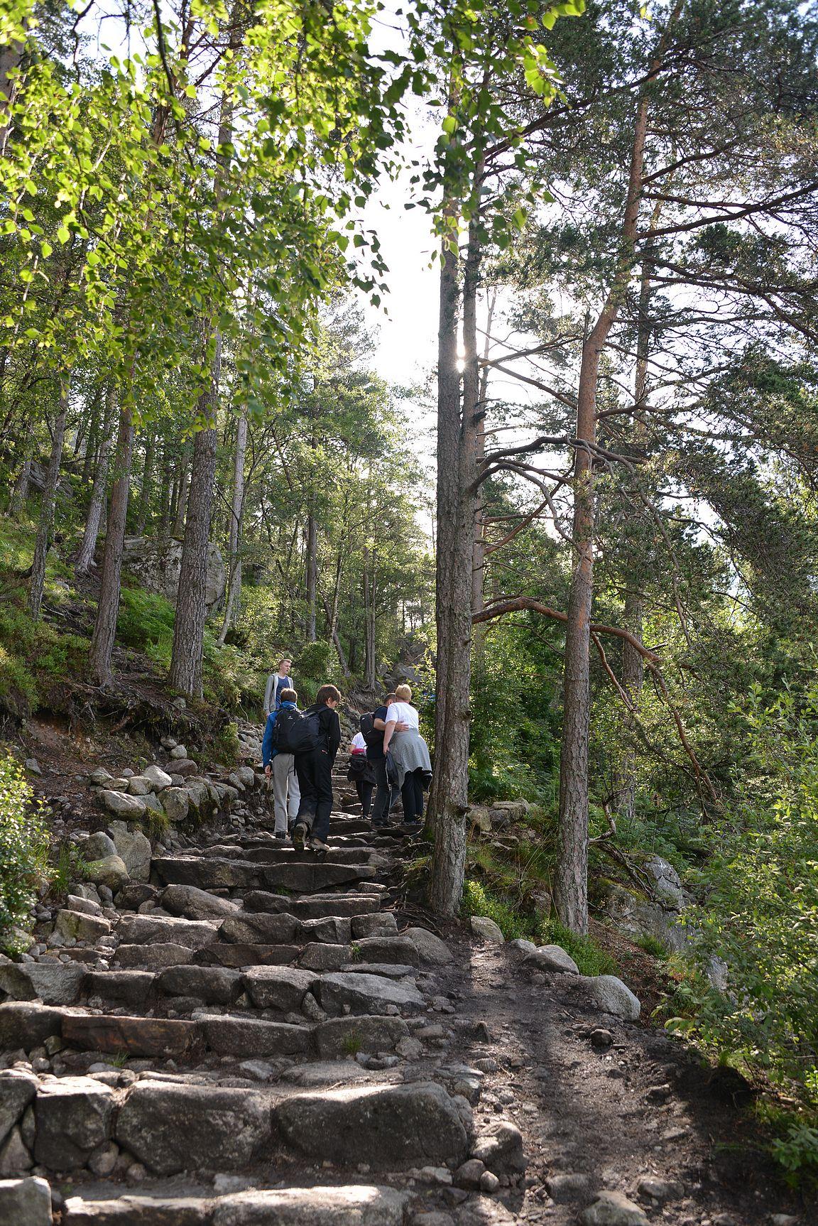Alkuun otettiin heti luulot pois ja lähdettiin puiden välissä pystysuoraan ylöspäin.