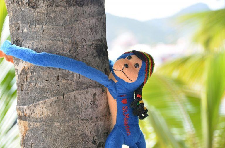 tekemistä St. Maarten
