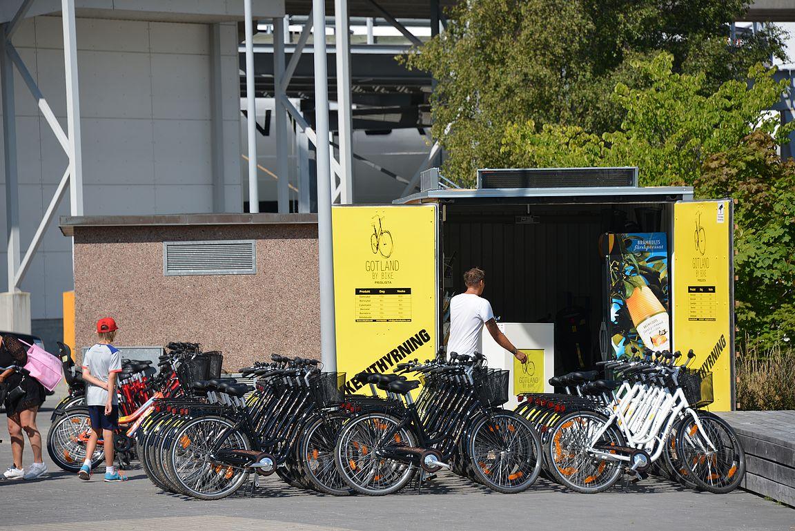 Risteilymatkustajat voivat vuokrata polkupyörät heti satamasta.