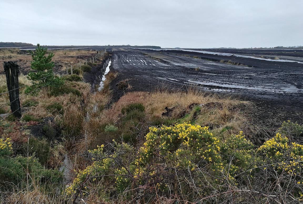 Clonmacnoisen lähellä on isoja turvesuoalueita.