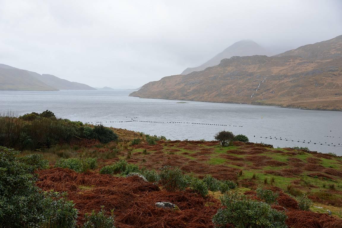 Irlannin ainoa vuono - Killary Fjord
