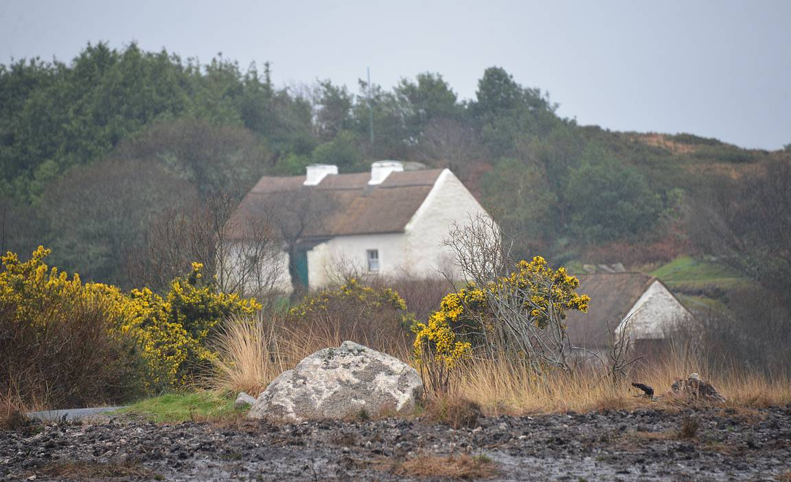 Patrick Pearse's Cottage ja Connemaran karu luonto.