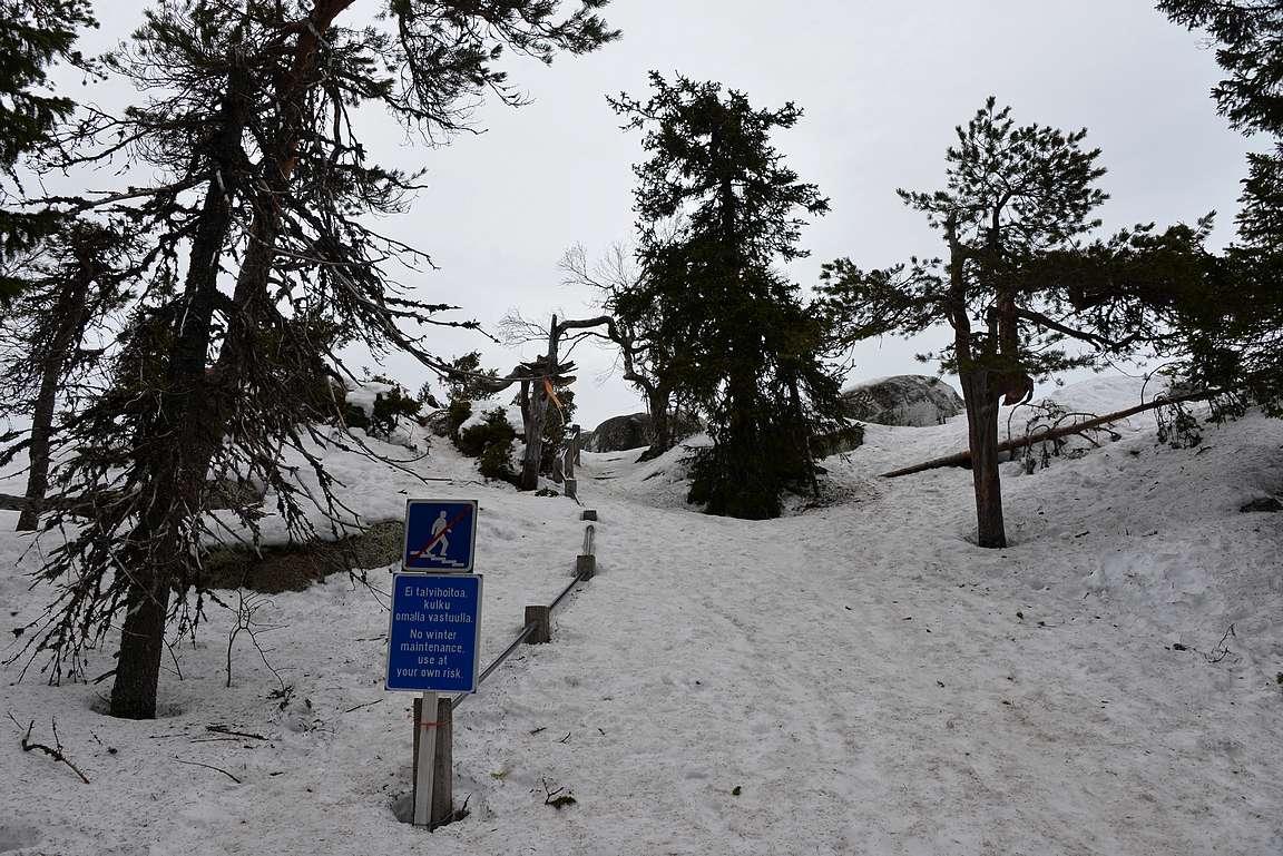 Ukko-Kolille nousevat portaat olivat lumikengille sopivat, ei niinkään vaelluskengille.