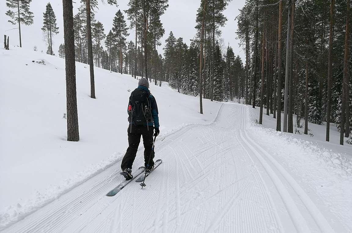Alkumatka mentiin latupohjaa pitkin. Olisi kyllä murtomaasuksillakin kelvannut tässä hiihdellä.