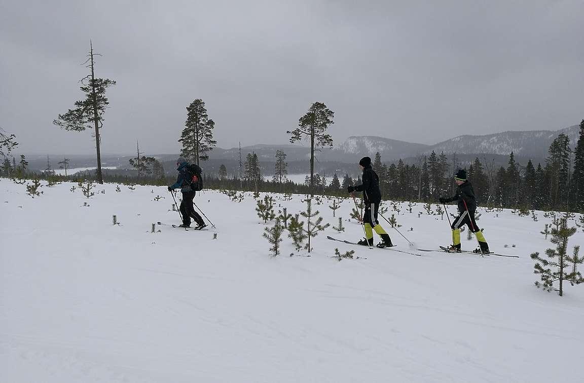 Mikäs näissä maisemissa on hangessa hiihdellä pienessä lumisateessa.