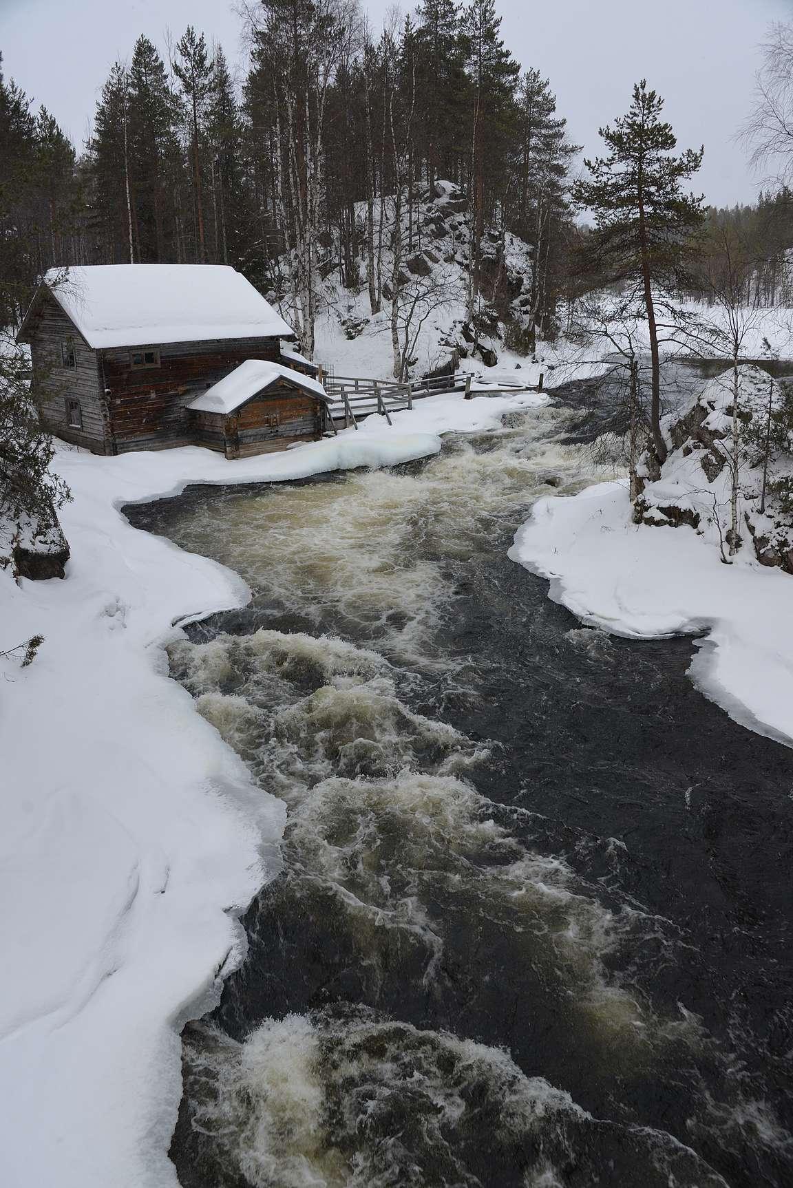 Myllykoski Oulangan kansallispuistossa on upea näky myös talvella.