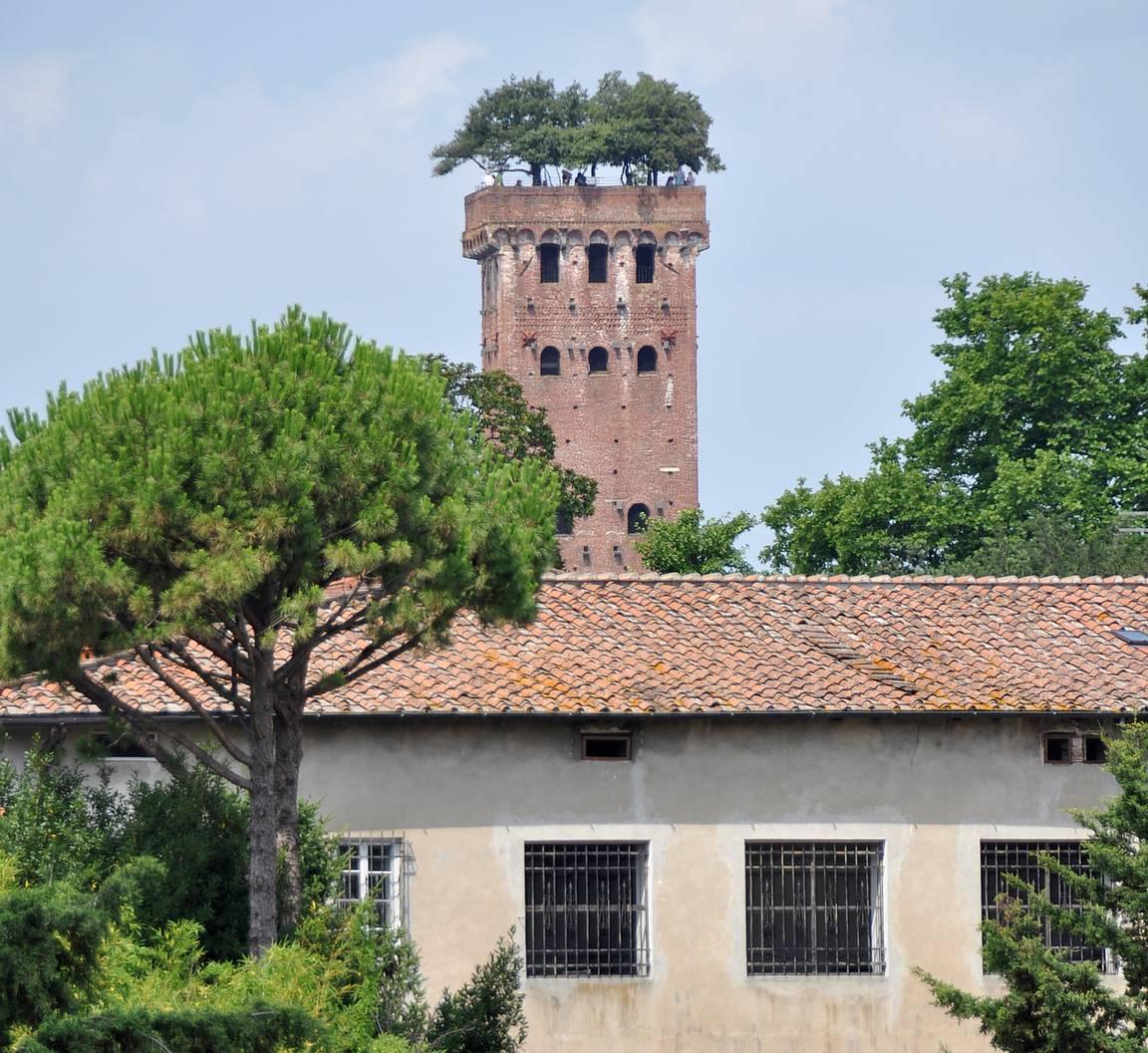 Torre Guinini - Lucca.