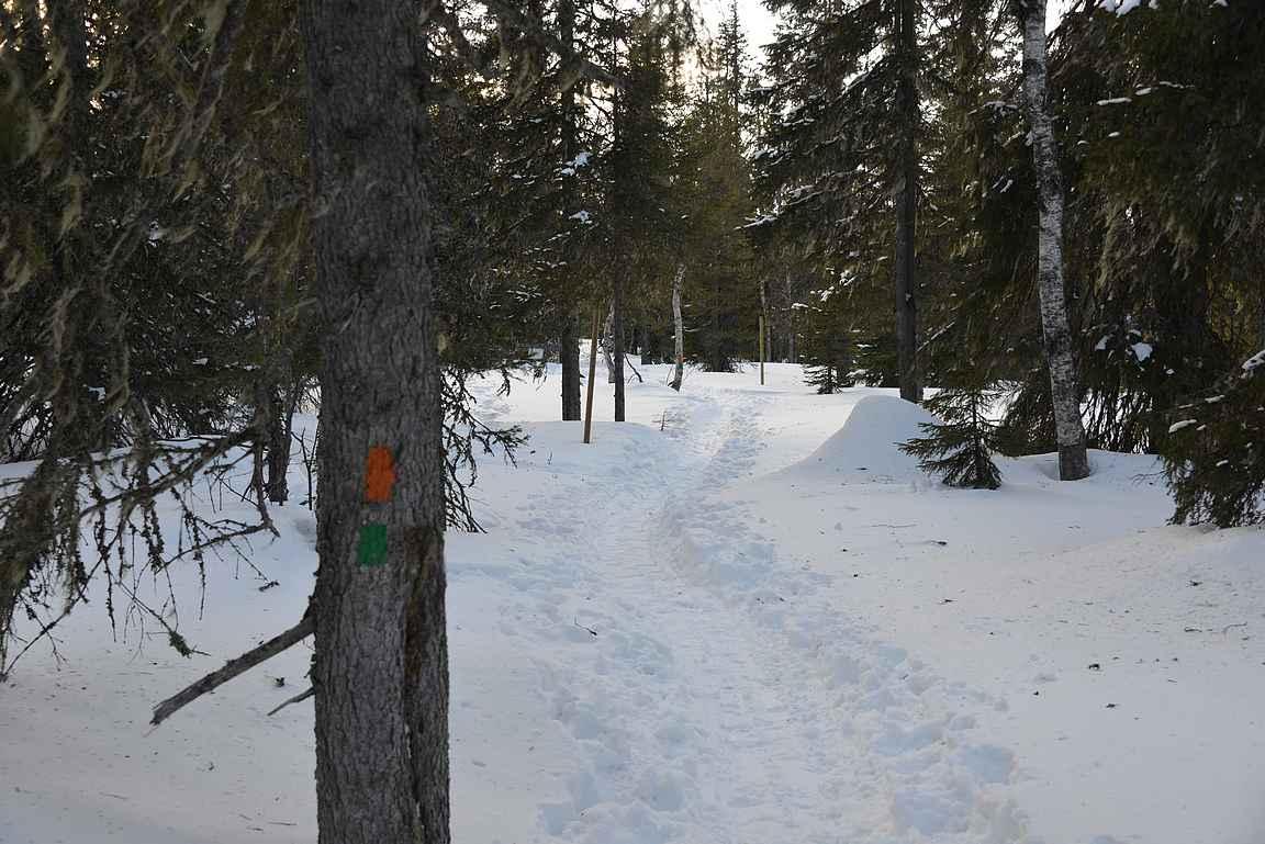 Reitin varrella on riittävän usein selvät merkinnät, joskin talvella polkua seuraamalla ei niitä alkumatkasta tarvittu.