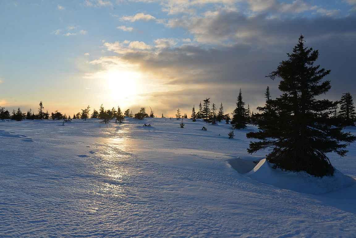 Riisitunturin kansallispuisto - tunturimaisemaa kauneimmillaan.