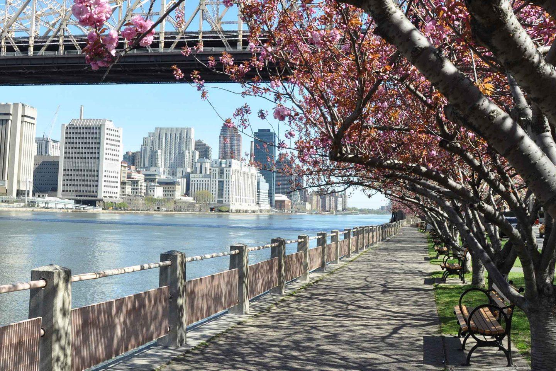 Top10 kaupunkilomat - parhaat suurkaupungit