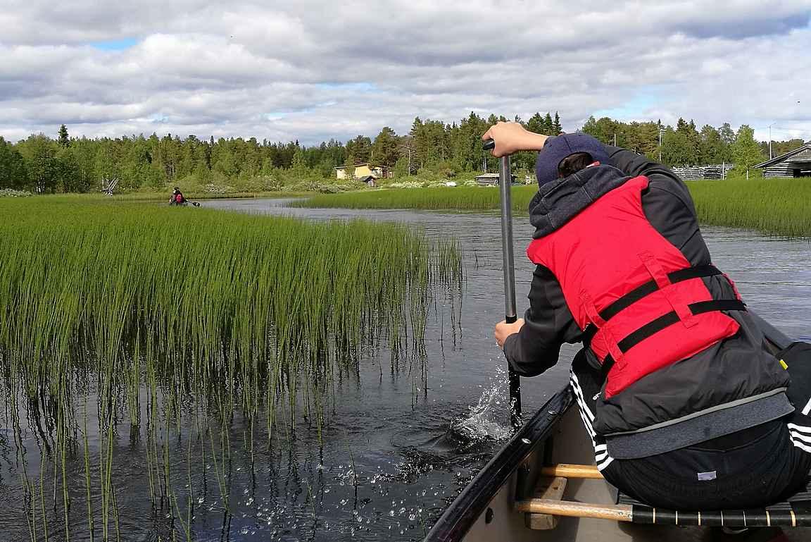 Majava vaeltaa, kanootti seuraa, vesi se kohisee ja laulu soi