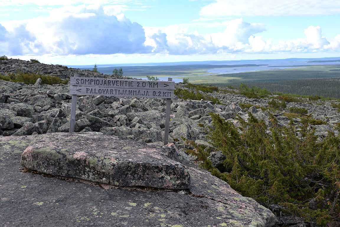Puusto loppuu parisataa metriä ennen Pyhä-Nattasen huippua.