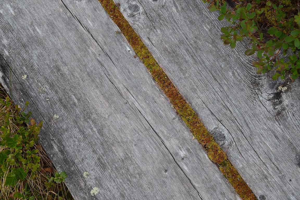 Urho Kekkosen kansallispuistossa on reittejä monelle vuodelle.