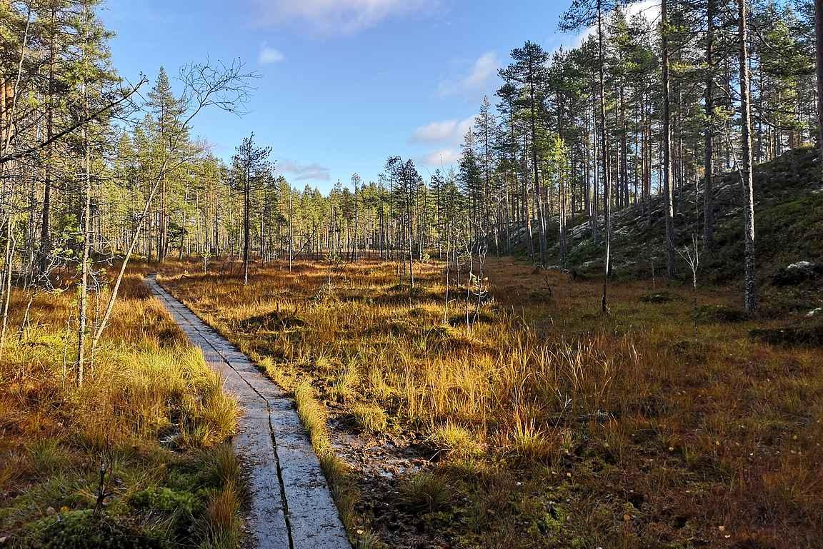 Suomen luontoa kauneimmillaan.