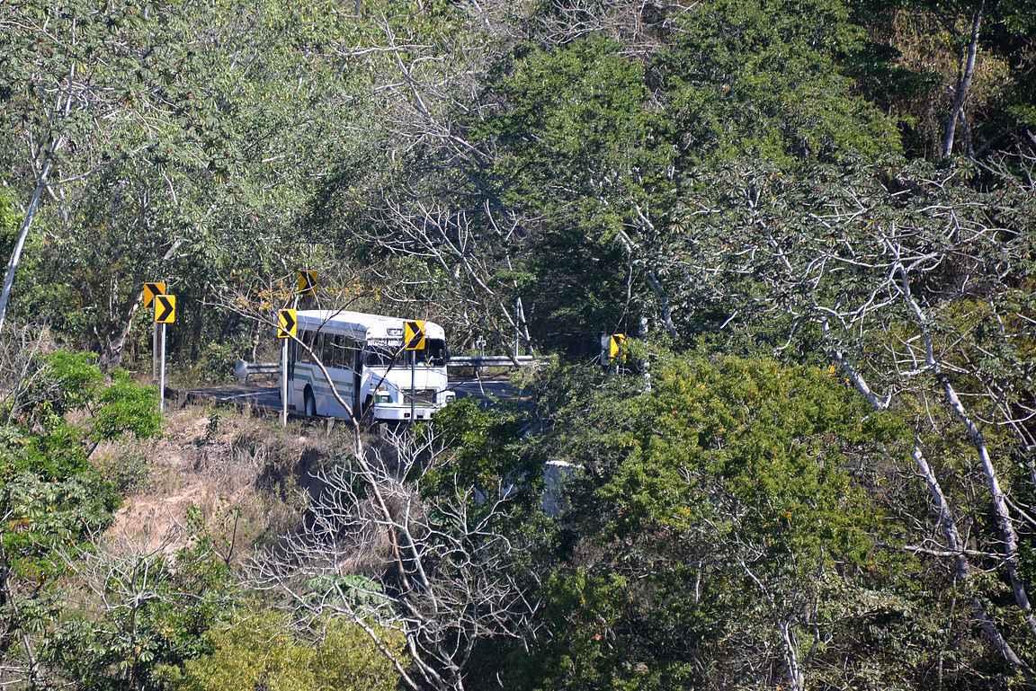 Kasvitieteelliseen puutarhaan pääsee myös paikallisbussilla.