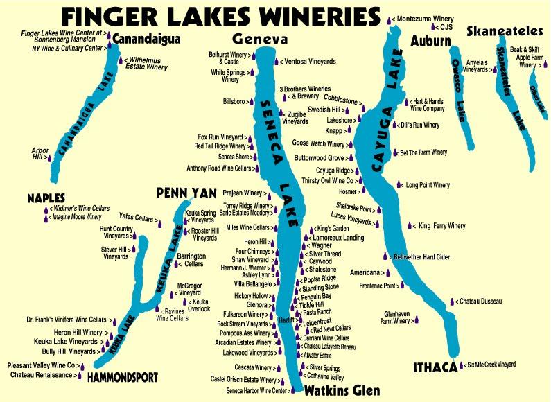 Finger Lakesin alueella on kaiken kaikkiaan 120 viinitilaa.