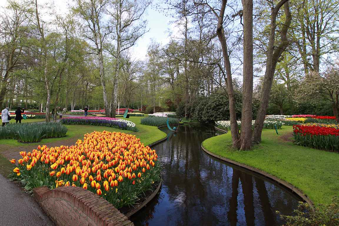 Keukenhof on maailman suurin kukkapuisto.