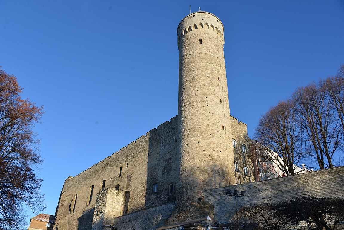 Pitkä Hermanni ja Toompean linnan muuria.