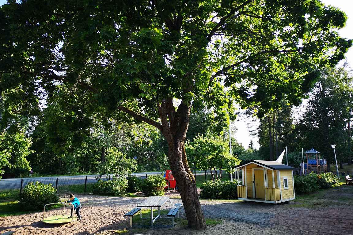 Tammelasta Tammelantieltä löytyy useampikin leikkipuisto, joita pääsee käyttämään iltaisin ja viikonloppuisin.