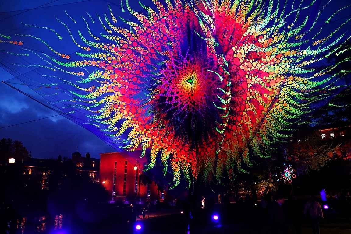 Flowers of Life: Initium - upeat värikkäät kukat loistavat Koskipuistossa.
