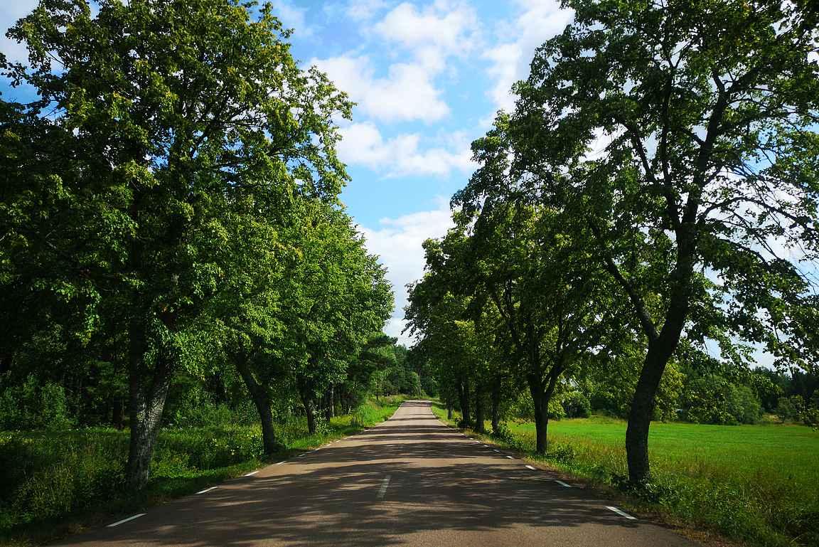 Ahvenanmaa on parhaimmillaan kiertäessä saarta joko autolla tai pyörällä.