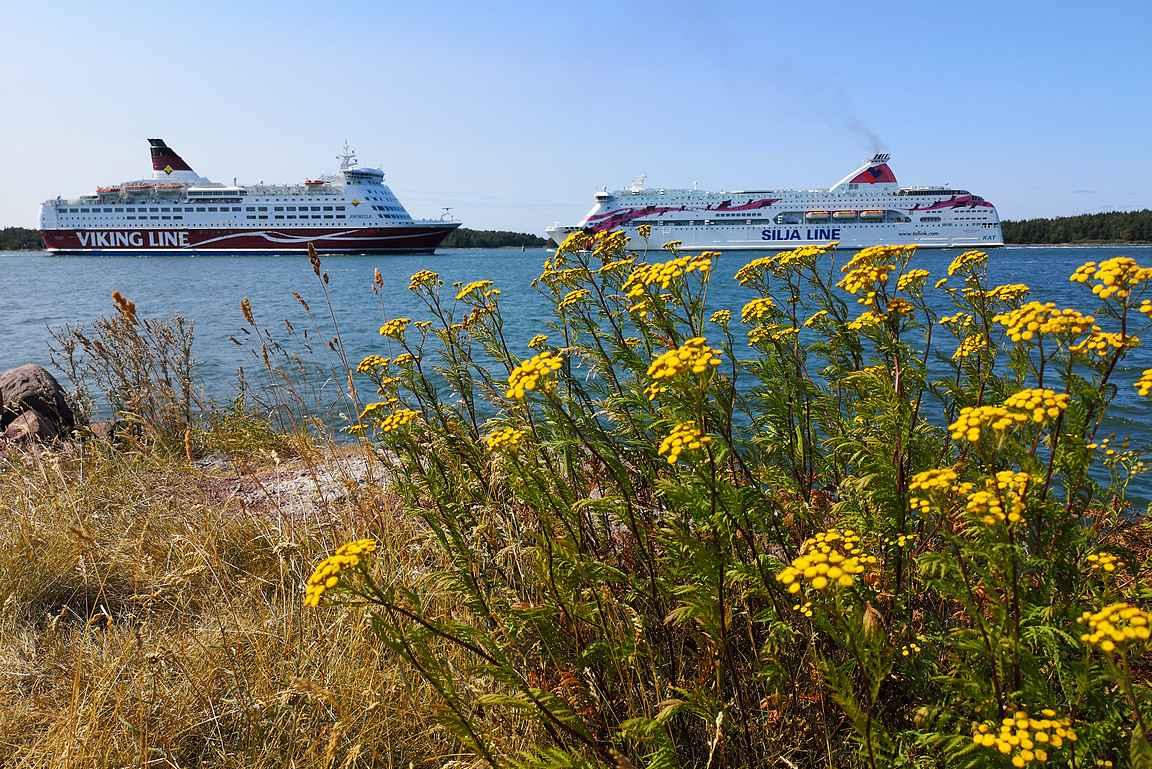 Korrvikin kalasatama on paras paikka nähdä ruotsinlaivat lähietäisyydeltä. Kaikki neljä isoa laivaa lipuu ohitse samaan aikaan - huikea näky!