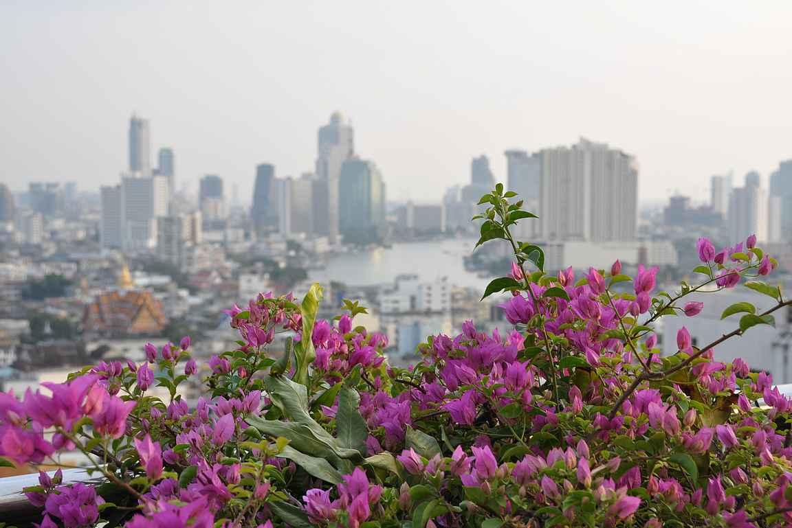Bangkokin ihailu korkeuksista on monesta reissun kohokohtia.