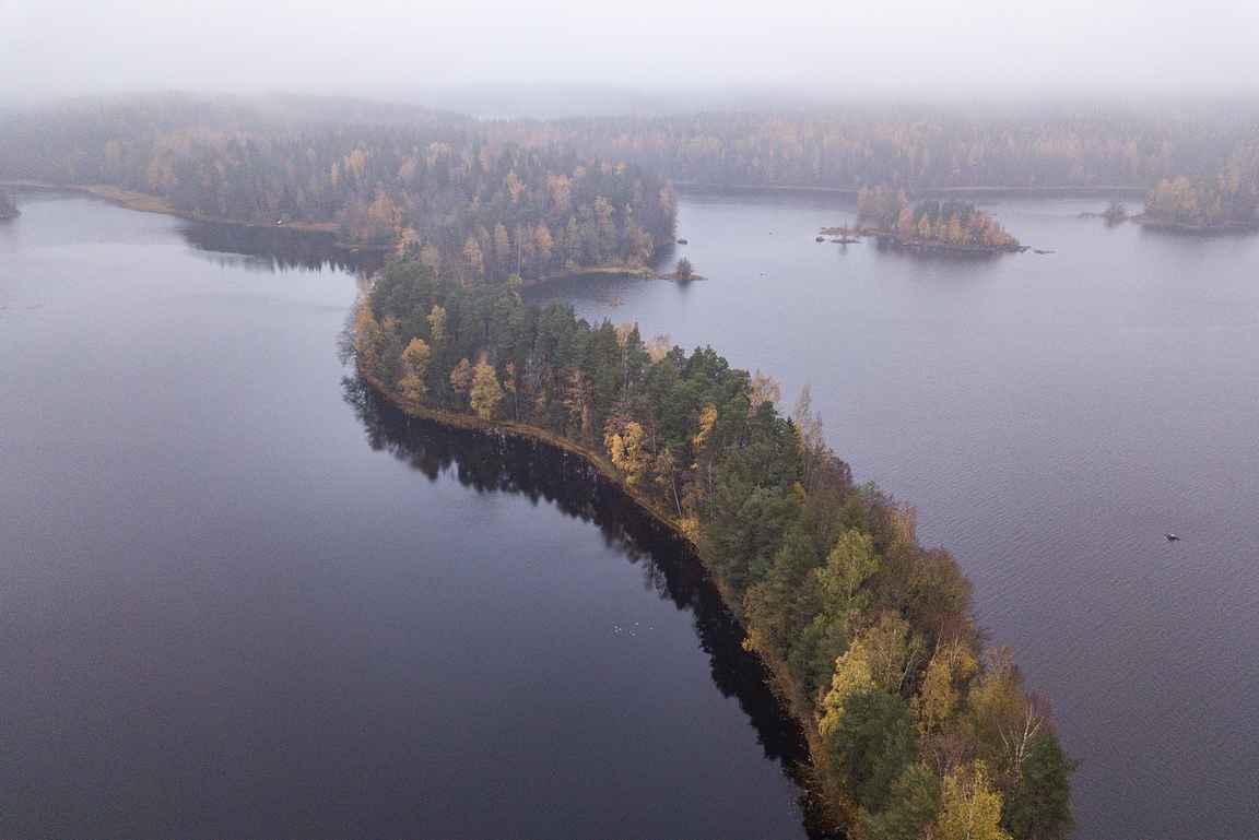 Liesjärven kansallispuistossa sijaitseva Kyynäränharju on tunnetuimpia Forssan seudun luontokohteita. copyright Antti Kanto