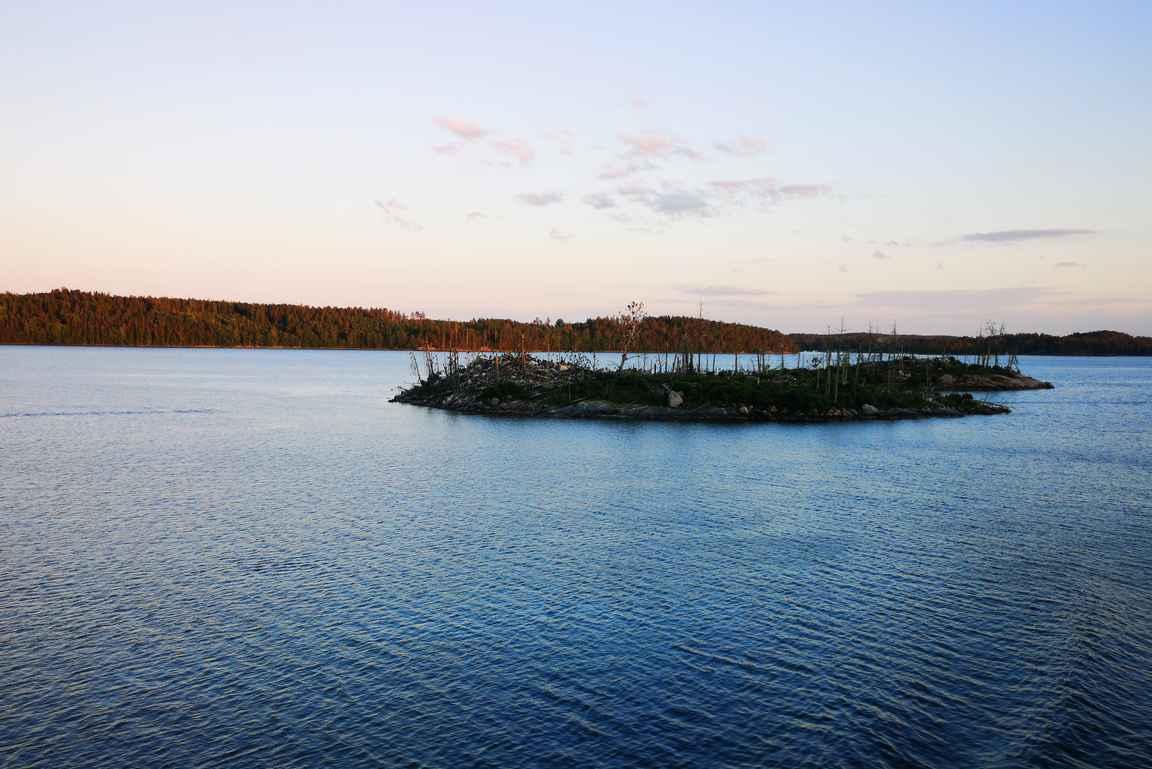 Merimetsot ovat tehneet tuhojaan Pukholmen saaren edustalla.
