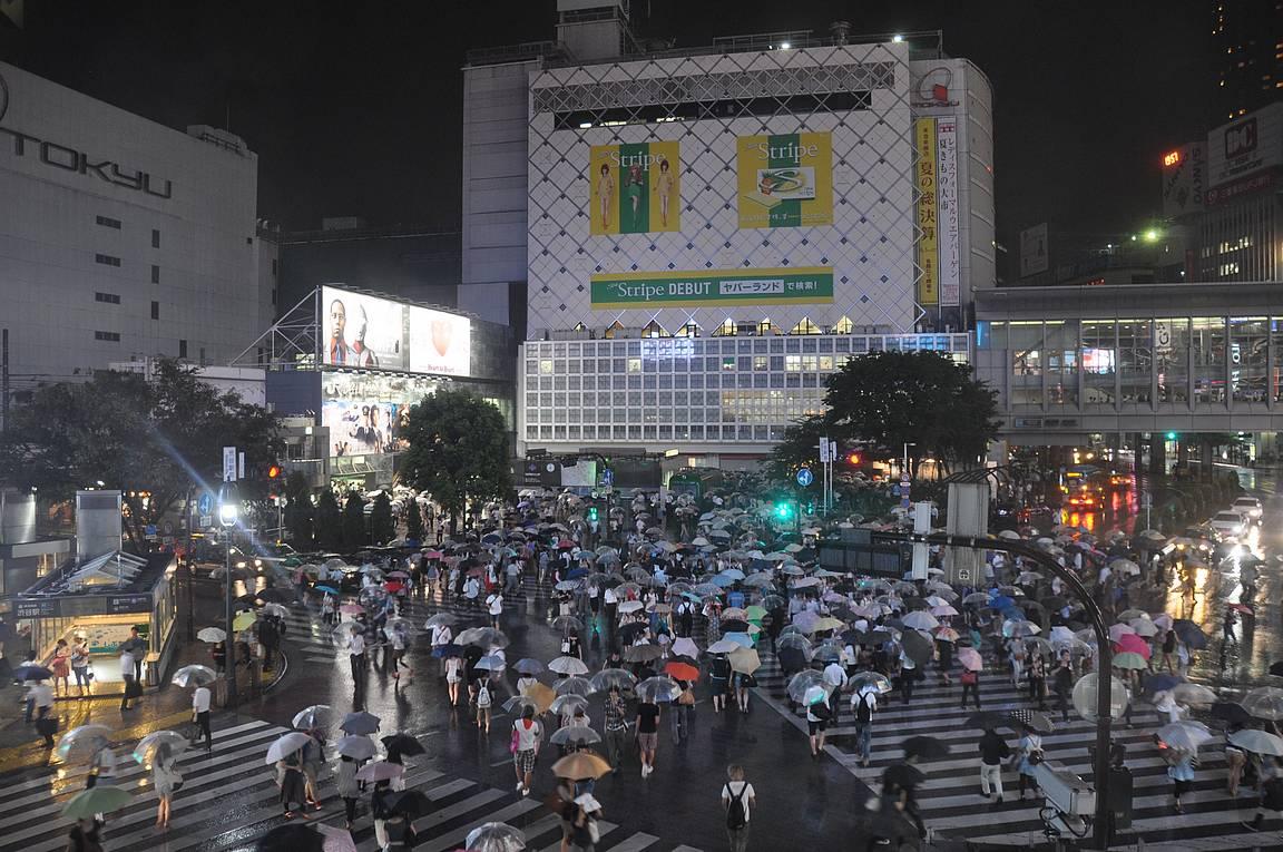 Maailman vilkkaimmaksi tituleerattu Shibuyan risteys.