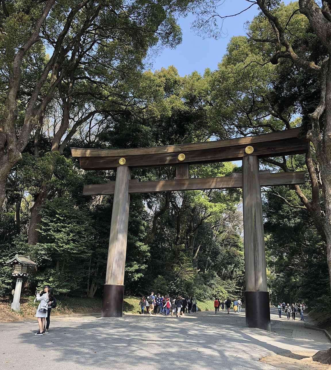 Meiji Jingulle kuljetaan upeiden puuporttien alta.