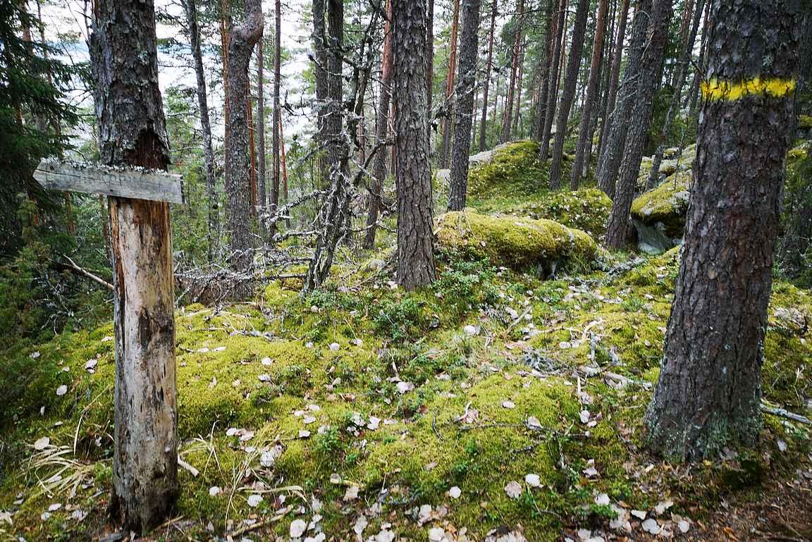 Oriveden luontokohteiden reitit on merkitty selvästi maastoon.