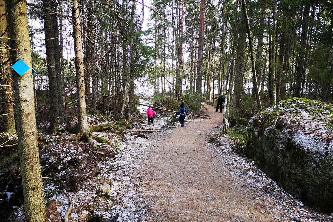 Parkkipaikalta Valkeajärven rantaan johdattaa esteetön polku soljuvien purojen vierellä.