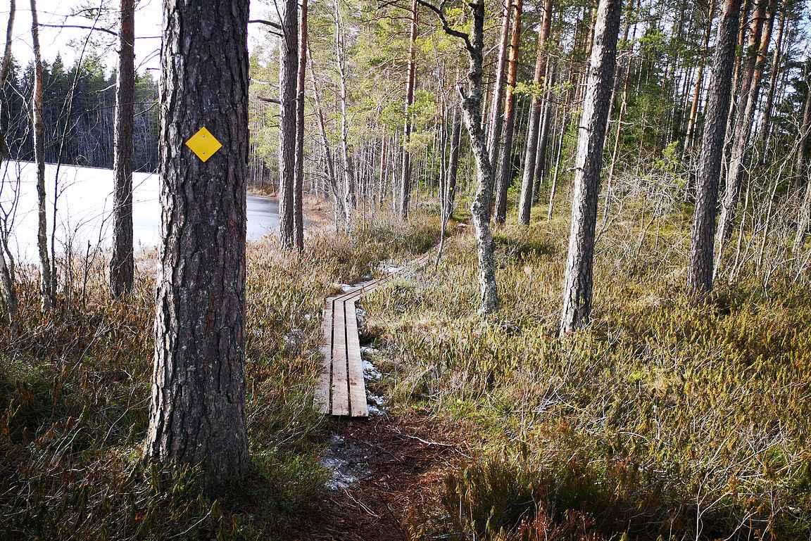 Ritajärven luonnonsuojelualueen reitit kiertävät kolmen järven ympäri.