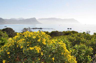 Kapin niemimaa tarjoilee maailman upeimpia maisemia.