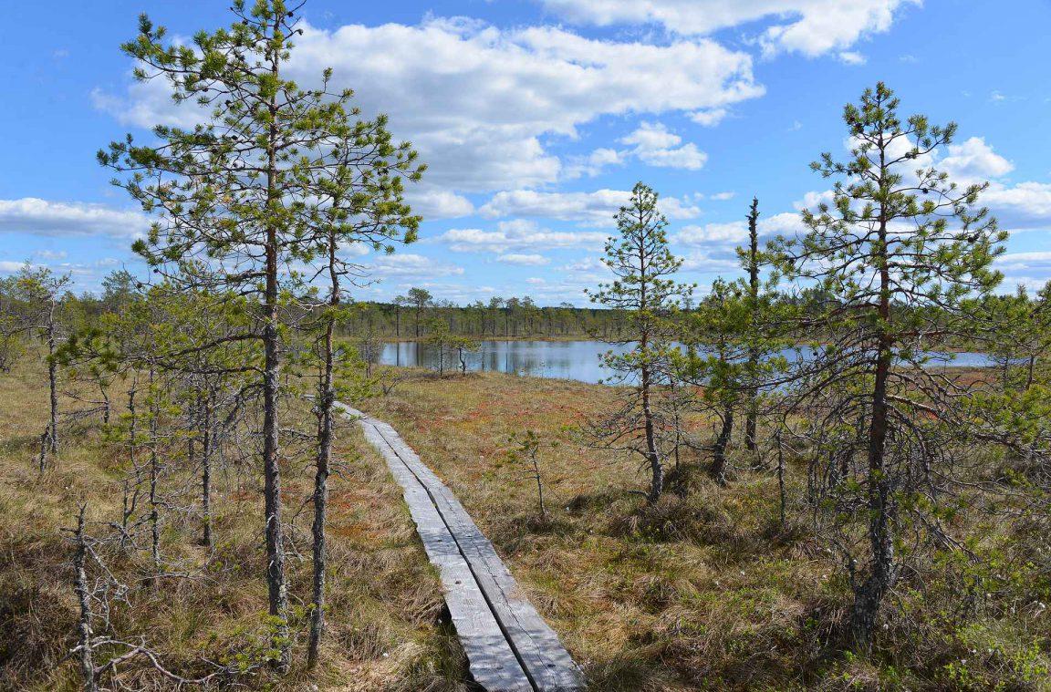 Ritajärven Kansallispuisto